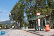 Tai Po Waterfront Park Yuen Shin Road 20190214