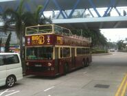 3 Big Bus green route
