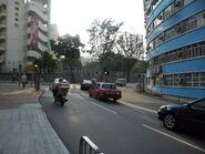 TinKwong SheungShing