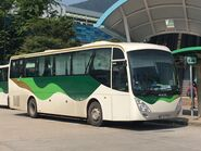 Kwoon Chung Bus WD3172 MTR Free Shuttle Bus S1A 01-10-2019