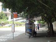 Siu Sai Wan Sports Ground-WB