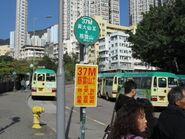 WTS Shatin Pass Road 9