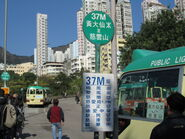 WTS Shatin Pass Road 10