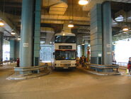 Shek Lei Tai Loong Street 1