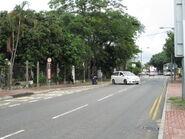 Tai Kong Po Kam Tin Road 1