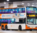 龍運巴士N42A線
