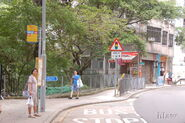 Western-LadderStreet-7992