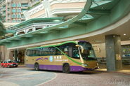 TungChung-CaribbeanCoastTerminus-7281