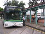 愉景灣巴士DB01P線