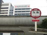 Prince Wales Hospital 6