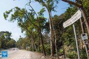 Tai Po Road Sha Tin Heights 20190207