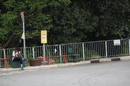 Fung Yuen Road Minibus-2