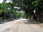 Tai Hang Tung Road near Tongyam 20180413