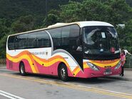 Kwoon Chung Bus VU2980 Free MTR Shuttle Bus S1A 01-07-2019