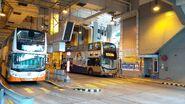 梨木樹邨公共運輸交匯處36M及36A線的車坑202007