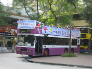 Citytours Tai Po