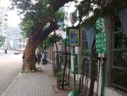 露明道北行-站景GMB33(2)