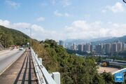 Tai Po Road Lookout 20190207 5