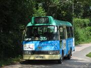 Yau Tam Mei r37 1