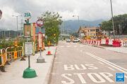 Tai Wo Tai Wo Service Road West 20160615 3