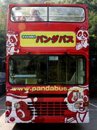 Panda Bus-8