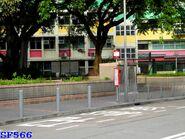 Tung Tsing Road----(2015 07 30)