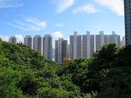 Yau Tong 20170726
