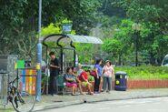 Mui Wo Market(0514)