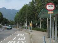 Shuen Wan Ting Kok Road 2