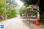 Wo Hop Shek San Tsuen 20160615