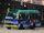 新界專綫小巴301線