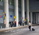 機場 (客運大樓) 總站