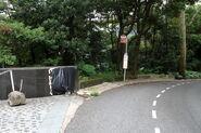 06 30 Peak Road-D1