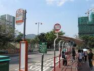 Lingnan University S3