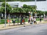 北大嶼山醫院 (松仁路)