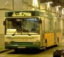 新巴796B線