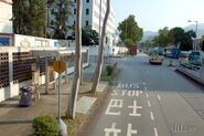 TaiPo-DaiFatStreet-9559