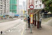 Shek Ying Path Kwai Chung 2 20160601