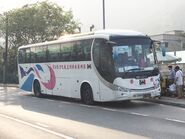 MV7087 Sha Tau Kok Express(Sha Tau Kok to Sheung Shui) 28-03-2019
