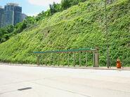 Lai Wan Road-1