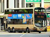 九巴81C線