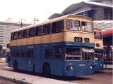 中巴11A線