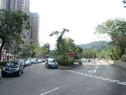 Tai Po Tau 20131117-1