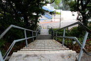 Chung Chi College (stairs)