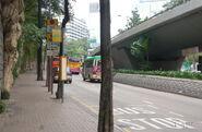 TsimShaTsui-ChinaHongKongCityKowloonPark-8435