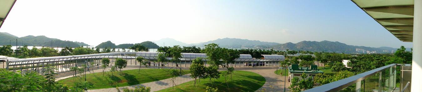 Sunny Bay PTI
