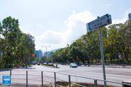 Yuen Shin Road 20190214