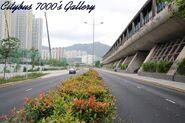 Shing Kai Road 2