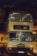 DW2955 N60