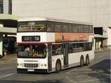 龍運巴士T39線